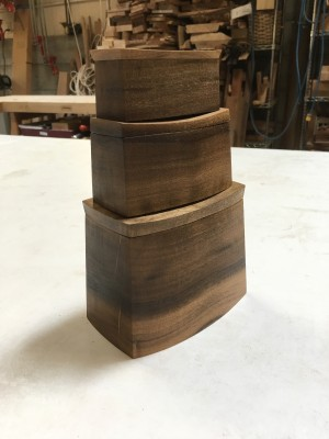 myrtle box family/ 5.5 to 4""